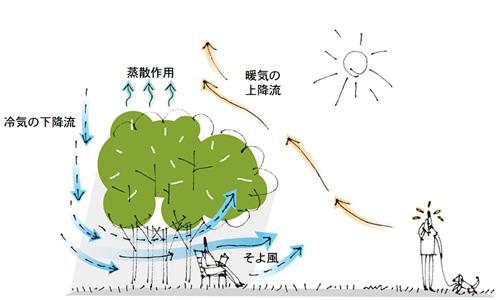 shimizukeiji_03_web.jpg